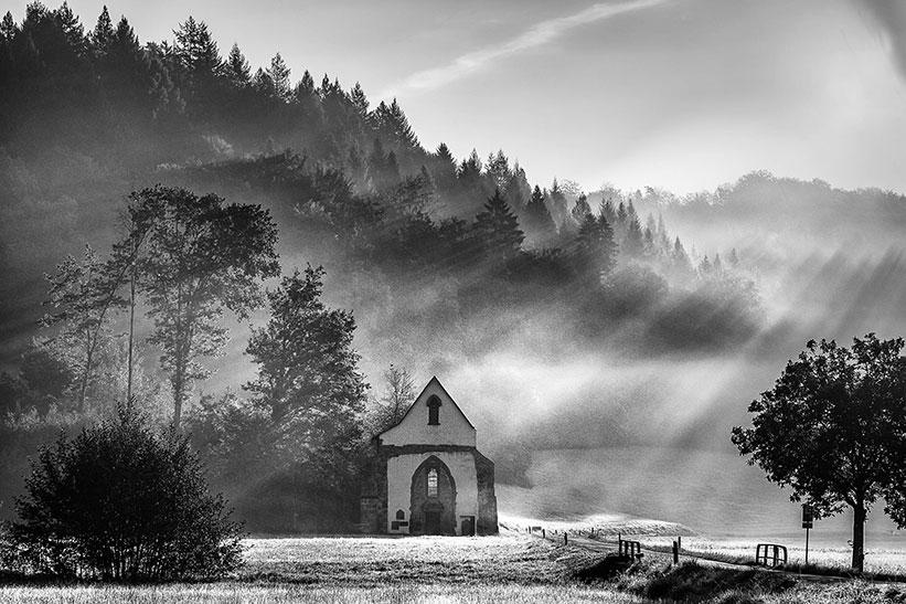 Philosophie Kosmos Schwarzwald - Foto: Sebastian Wehrle
